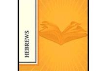 Bible Studies / by Laureh Johnson