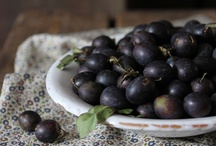 """Berries - That which is attractive or pleasing; similar to bee's knees, As in """"It's the berries."""" / by Fiona Berry"""