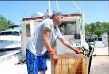 NC Fishermen / Stories & photos of the NC commercial fishing industry