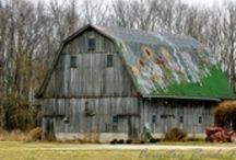 Barns / Barns...love them! / by Lori Coil Gulley