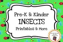 Insect Theme / Insect printables, ideas and activities for your preschool or kindergarten insect/bug unit curriculum.  Explore entomologists, insects body parts and insect habitats!