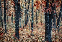 AUTUMN / Autumn and Fall inspired / by Sharolyn Newington