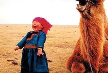 Happy Happy Joy Joy! / by Wendy Clyma