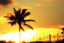 BEAUTIFUL SUNSET / sunsets from around the world