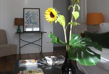 Gulbenkian - apartment 4C / Gulbenkian is a light, spacious one-bedroom apartment in Baixa House, Lisbon. The apartment is named after the beautiful gardens of the Calouste Gulbenkian Foundation, one of the city's most important art foundations.