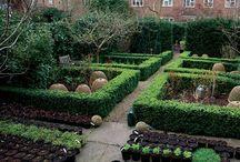 Home | Garden