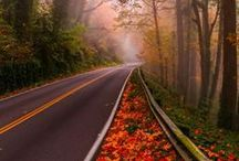 Autumns awesome Photos ❤❤