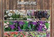 Southern Living Plant Collection / by Southern Living