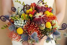 Flowers / by Baumannas