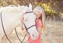 Horse Love / by Aimee Pool Photography