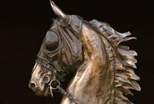 Horses / Beautiful and fun images of horses from around the world and celebrities with horses.