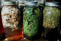 Pickle Spread Ferment & Froth...