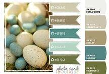 Home Depot Paint Department Ideas / by April Zakrzewski Loken