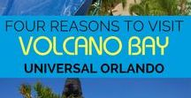 Universal Orlando / Harry Potter, Minions, and all your favorite movies come alive at Universal Orlando!  Tips and tricks to make your adventure awesome!