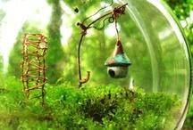 Greenhouses & Indoor Gardening / Greenhouses, indoor gardening, & terrariums / by Pearl Sanborn