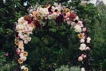 b l o o m s. / Beautiful, gorgeous florals. / by roseanna