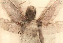 remnants . / by Laura Carolan