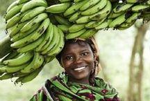 African Food / Njama choma, makande, ugali, nsima, tilapia, mandazi, chapati.. fruits vegetables. mmm makes me wanna go back soon! #africa