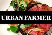 """Urban Farmer Steakhouse - Philadelphia / Urban Farmer Philadelphia is a modern steakhouse bringing """"rural chic"""" to life."""