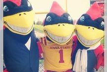 Iowa State Cyclones / by Tina
