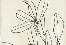drawn / illustrations & hand drawings