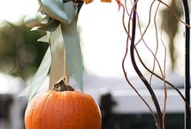 Fall Holiday Crafts & Treats / by Linda McCullough