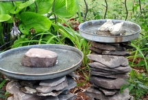 Items for the Garden / by Tamora Hovde