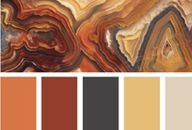 Color Palettes / by Caitlin Henry