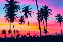 Tropical Paradise / Nowhere else does the beauty of God's creation move me, than in a tropical paradise!