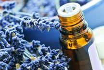 Essential Oils & Carrier Oils Info / by Darci Brown