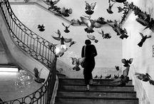 ● B & W / Wynn Bullock , Francesca Woodman , Maurice Tabard , edward hartwig , Henri Cartier-Bresson