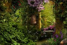 〔   Garden & Plants   〕 / by amu co