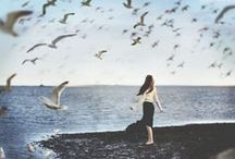 ⧼ the gull girls ⧽ / not every girl at the beach is a mermaid