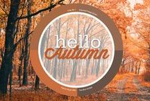 Fall into Autumn / Embrace fall and revel in the gorgeous array of amber, scarlet and chestnut.