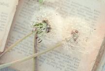 An Ode to the Written Word / Inspiring the dream