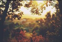 Landscapery / Take me away.