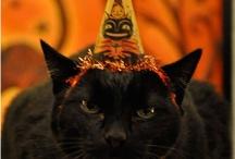 Halloween Favorites / by Lilian J