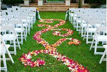 Wedding / by Liz Alpers