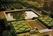 Backyard, Pool and Gardens / by Ian Bradley