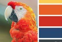 Color / Mixes - Recipes - Theory