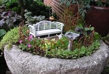 Fairy gardens / Fairies, fairy gardens, and tiny terrariums