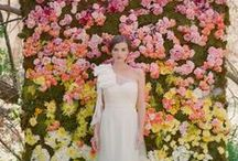 Sacramento Brides / Sacramento Brides, Brides-to-Be, Mothers of the Bride and Flower Girlies - Find local wedding professionals here to help you plan your big day. Flowers, gowns, venues, invitations, caterers, photographers, videographers, favors and more! Sponsored Pins from the Highest Quality Wedding Vendors / by Julie Gallaher