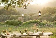 Wedding planner Ideas / by Lauren Almaraz