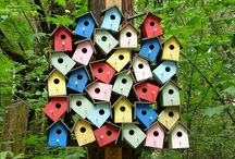 Birdhouses / by Leslie Harvey