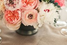 Flowers / Flower Photographs, Flower Crafts, Flowers in Design / by Suzy Plantamura