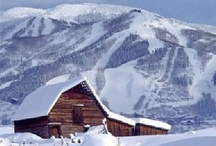 ♥Colorado~Native  / I was born in Colorado - have lived all over the country and on the other side of the world, traveled to lots of beautiful places, but there is nowhere else I'd rather be than here in my Colorado mountains! / by Glenda Roslund