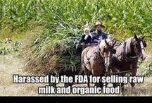 Say NO! to GMO