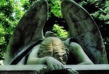 Angels Among Us / by Debra Apple