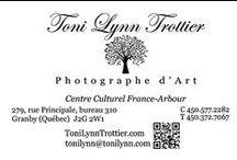 Toni Lynn Trottier ~ Fine Art Photography / Quebec, Vermont and Beyond