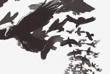 < raven >